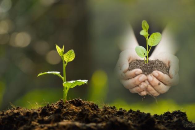 Save Our Soil | Heinrich Böll Stiftung Nigeria